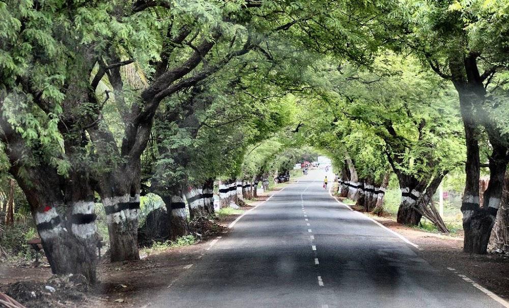 Guwahati-shillong-image
