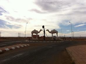 Photo: Tan Tan, the first desert city