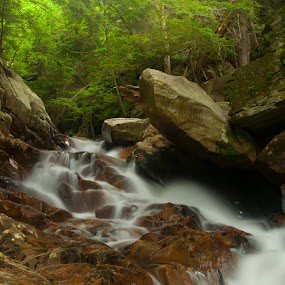Springtime Flow by Kevin Hart - Landscapes Forests ( water, kevin hart, forest, vermont, springtime flow, falls of lana,  )