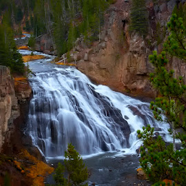 Yellowstone Waterfall by Rita Taylor - Landscapes Waterscapes ( rock, waterfall, tree, water )