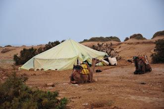 Photo: Bivouac - nos guides installent la tente. Notez la bâche supplémentaire pour éviter à la pluie de s'infiltrer (les dromadaires seront même bâchés pendant la nuit).
