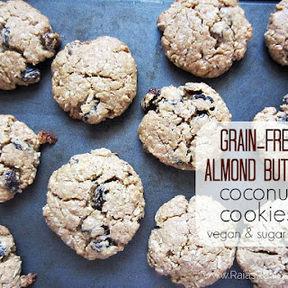 Almond Butter Coconut Cookies – grain, dairy, egg, and sugar free