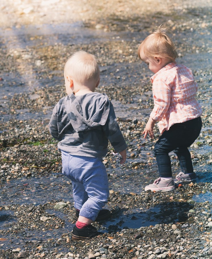 The Little Beachcombers by Judy Wright Lott - Babies & Children Toddlers ( shore, squalicum beach, park, bellingham, nature, children, sunshine, toddlers )