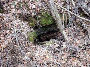 Photo: Turtle Cave entrance
