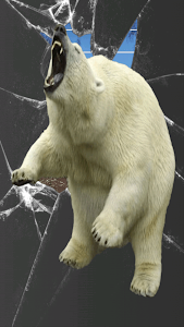Bear Attack screenshot 3