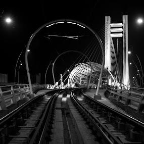 Rail Station by Mircea Bogdan - Buildings & Architecture Bridges & Suspended Structures ( rail, night, bridge )
