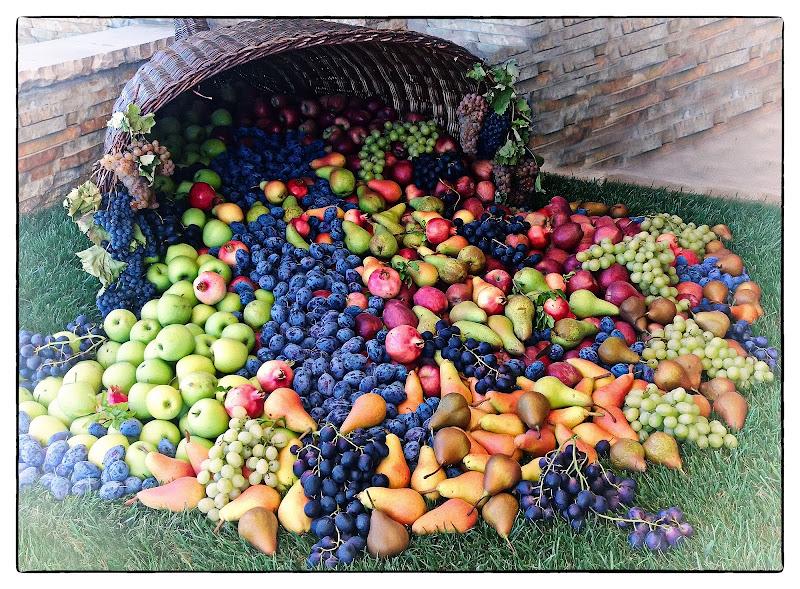 Cornucopia di frutta di Patrix