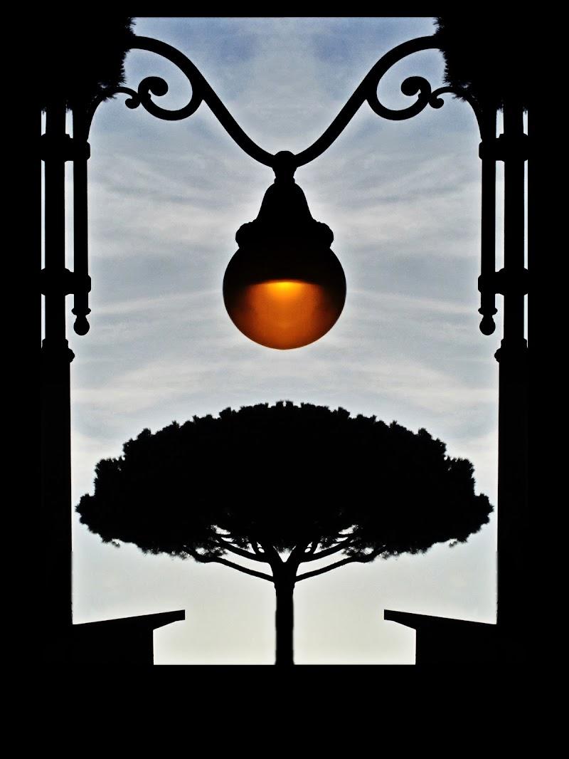 il pino aldilà del lampione di massimo bertozzi