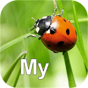 App Icon for Nature My - North America App in Czech Republic Google Play Store