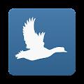 Little Bird Quiz Europe