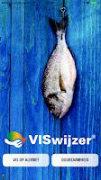 Screenshot of VISwijzer
