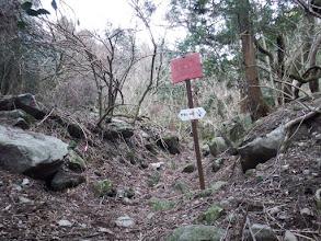 ここで直進する(登山道は左奥)