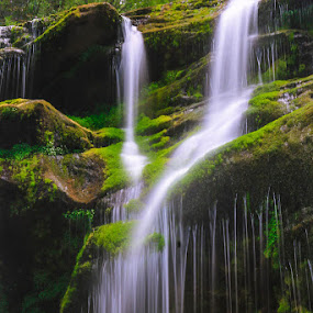 Dreams Of A Falls by Keith-Lisa Bell Bell - Landscapes Waterscapes ( waterfalls, green, moss, forest,  )