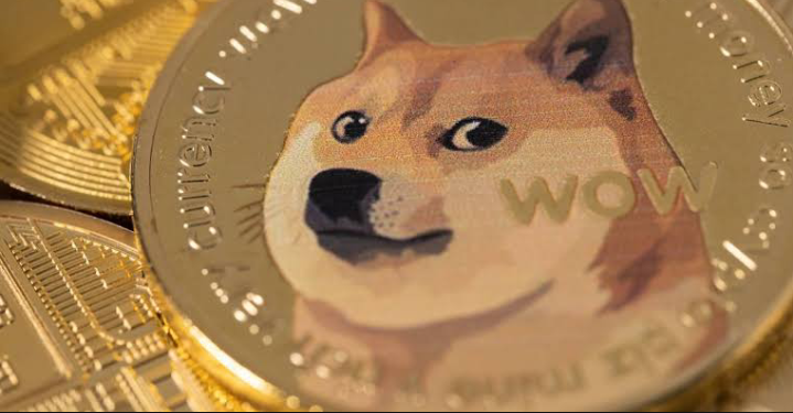 Is Dogecoin a good investment? 2