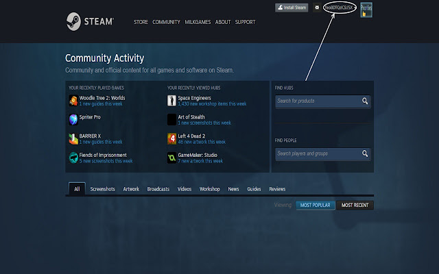 Steam Account Name Hider
