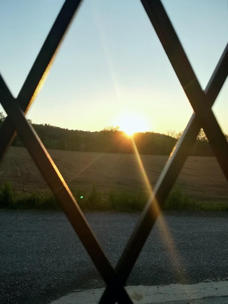 Voglia di libertà, voglia di uscire dal cancello  di Robyvf