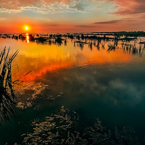 Sulina, Black Sea by Tomita Savastre - Landscapes Sunsets & Sunrises ( clouds, danube delta, sea, sunrise, colours )