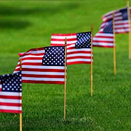Flags by Ruth Overmyer - Uncategorized All Uncategorized