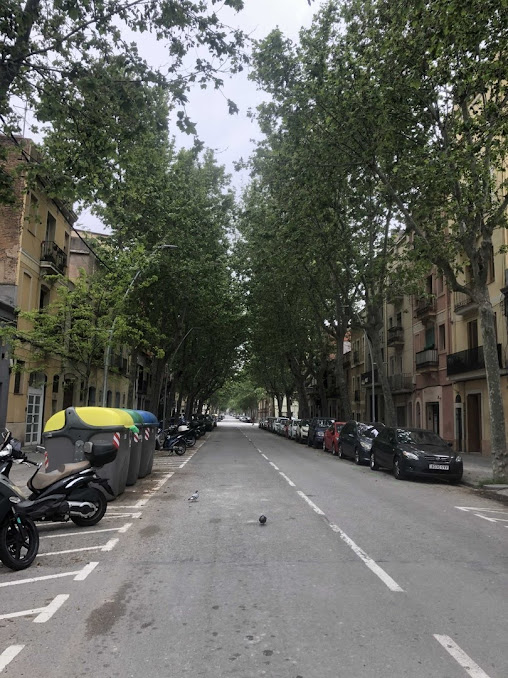 Ищем место под солнцем: в Барселоне