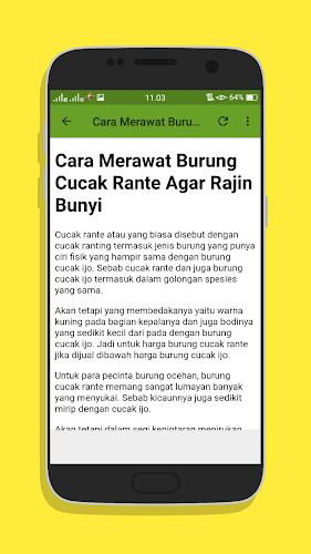 Cucak Rante Mp3 : cucak, rante, Download, Kicau, Cucak, Rante, Juara, Latest, Version, Android