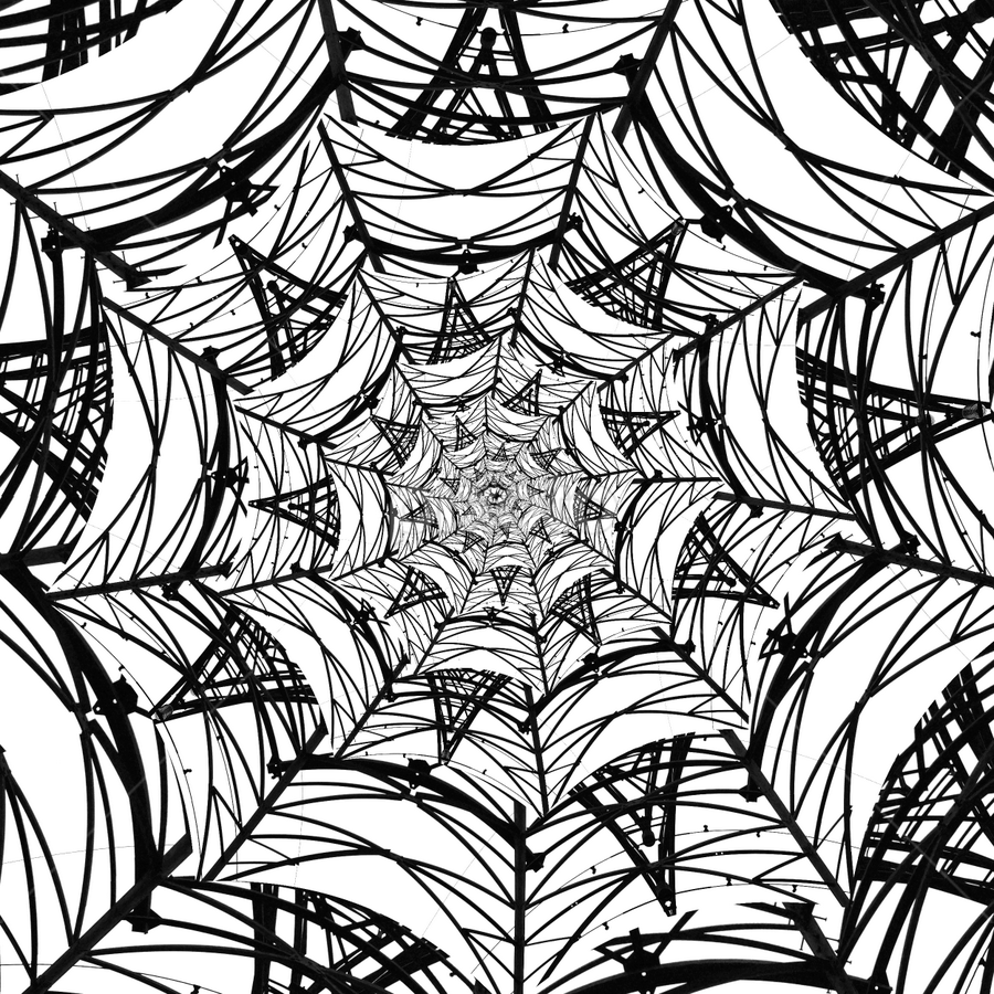 Pylon Spiderweb by Shaun White - Abstract Patterns ( abstract, pylon, droste, monochrome, pattern, black and white, spiderweb, pwclines )