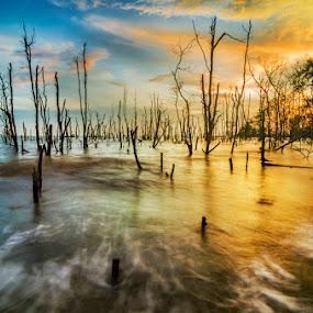 2 World  by Najmi Rooslan - Landscapes Sunsets & Sunrises ( lee, gnd soft, sunset, selangor, uwa, malaysia, beach, nikon, tokina )