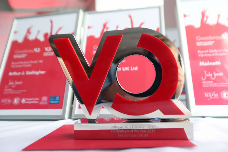 Awards for vocational qualification stars