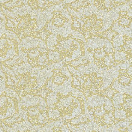 Bachelors Button Tapet - gold