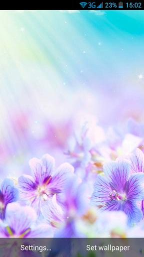 夏季花卉动态壁纸