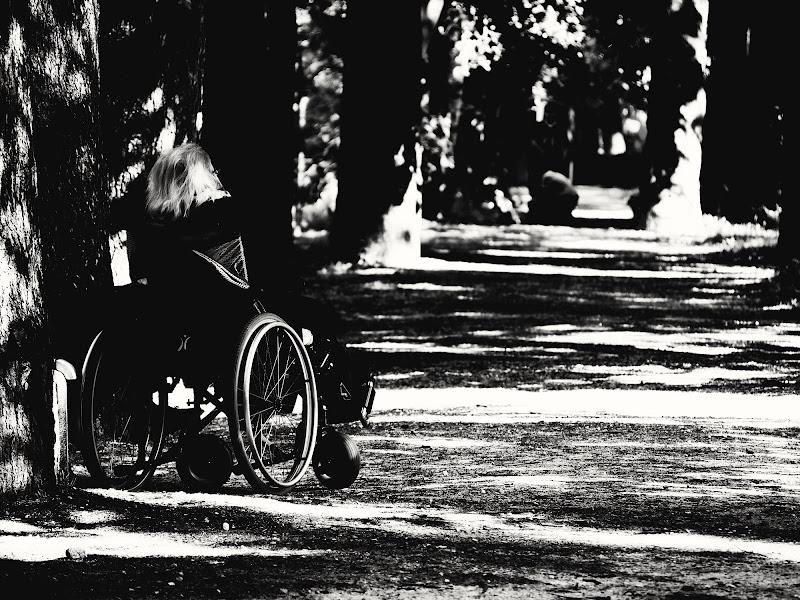 le ruote della mia vita di Carlo Bellavite