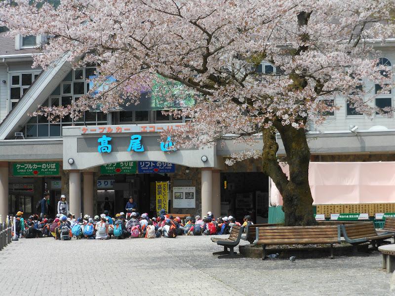 Photo: Mount Takao- we saw lots of school classes