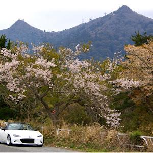 ロードスター ND5RC のカスタム事例画像 suzukihi さんの2020年04月06日18:28の投稿