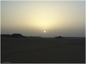 Photo: Salenedo en sol en el desierto nubio.