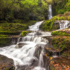 Autumn falls by Michael Strier - Landscapes Waterscapes ( green, rocks, leaves, nature, waterfall, cascade, south island, caitlins, rainforest, autumn, new zealand,  )