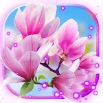 Spring Magnolia live wallpaper icon