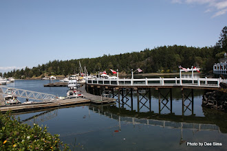 Photo: (Year 2) Day 334 - Roche Harbor #2