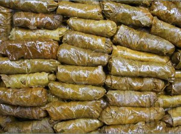 Stuffed Grapeleaves Recipe