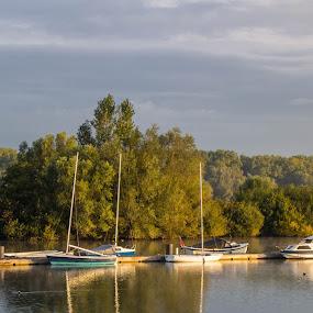 boats by Franky Vanlerberghe - City,  Street & Park  City Parks ( boot, tree, park, boat, river )