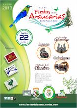 Photo: AFICHE FIESTAS 2013