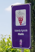 Photo: Sagrantino wine route sign.  Sagrantino is only grown in the area around Montefalco.