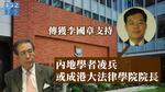 傳獲李國章支持 內地學者凌兵或成港大法律學院院長