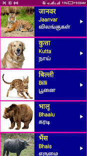 Learn Hindi from Tamil Pro for PC-Windows 7,8,10 and Mac apk screenshot 3