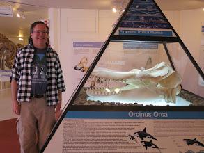 Photo: Peninsula Valdez museum