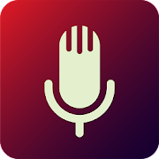 Voice Search App. Audio Assistant. Voice Commands