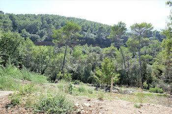 terrain à Mouans-Sartoux (06)
