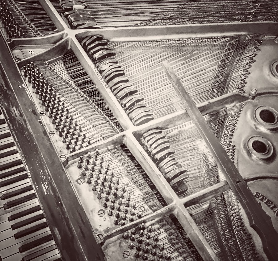 Abandoned  by Lorna Littrell - Black & White Objects & Still Life ( piano, strings, black and white, abstract, abandoned )