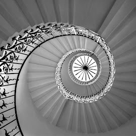 Spiraling Upwards by Adrian Campfield - Black & White Buildings & Architecture ( interior, uk, patterns, monochrome, spiral staircase, black and white, buildlings, round, queen mother house, curves, greenwich, city, lily spiral staircase, england, stairs, london, abstracts, dark, lines, mono, light )