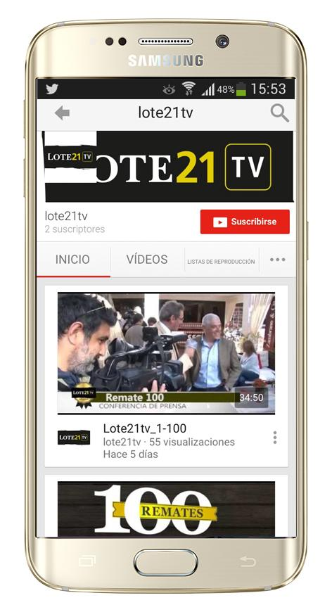 Lote21- screenshot