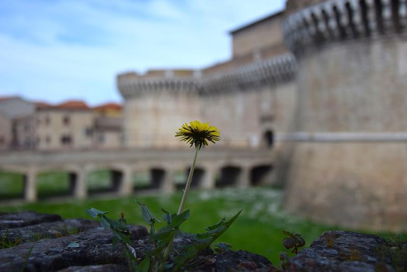 Rocca  di s_ornella