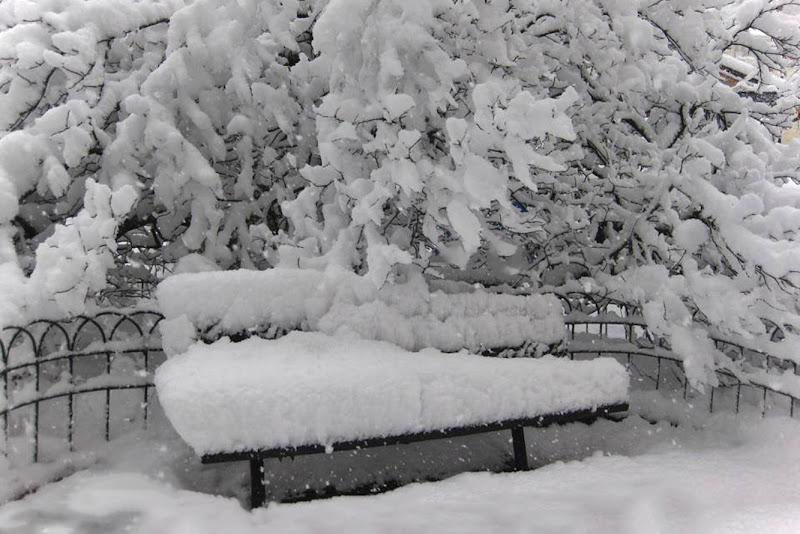 Neve di Ro51